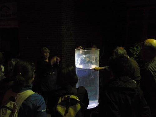 Wasserdemonstration